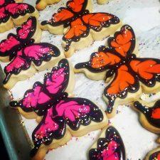Flowers, Butterflies and Birds