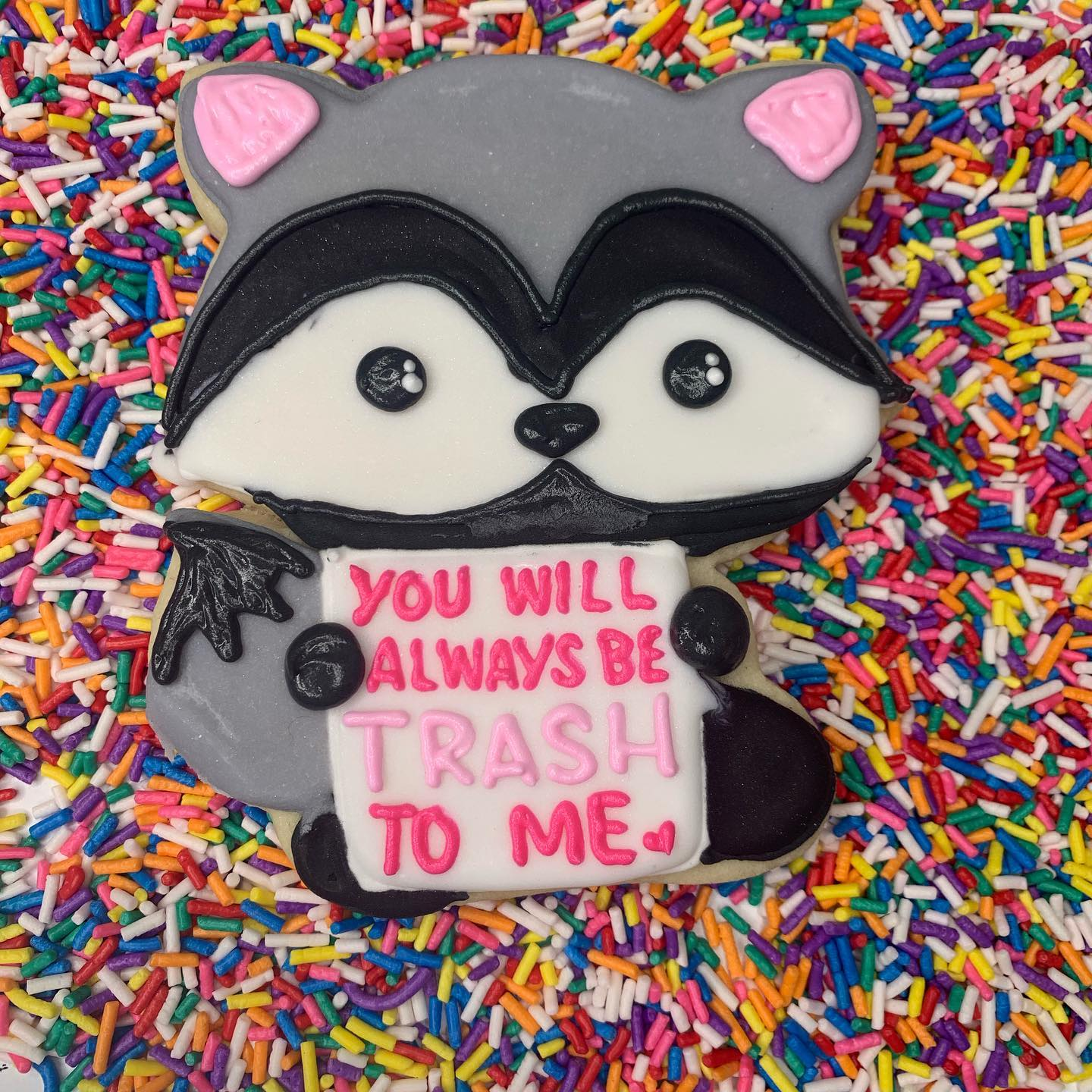 Raccoon Cookies Holding Sign