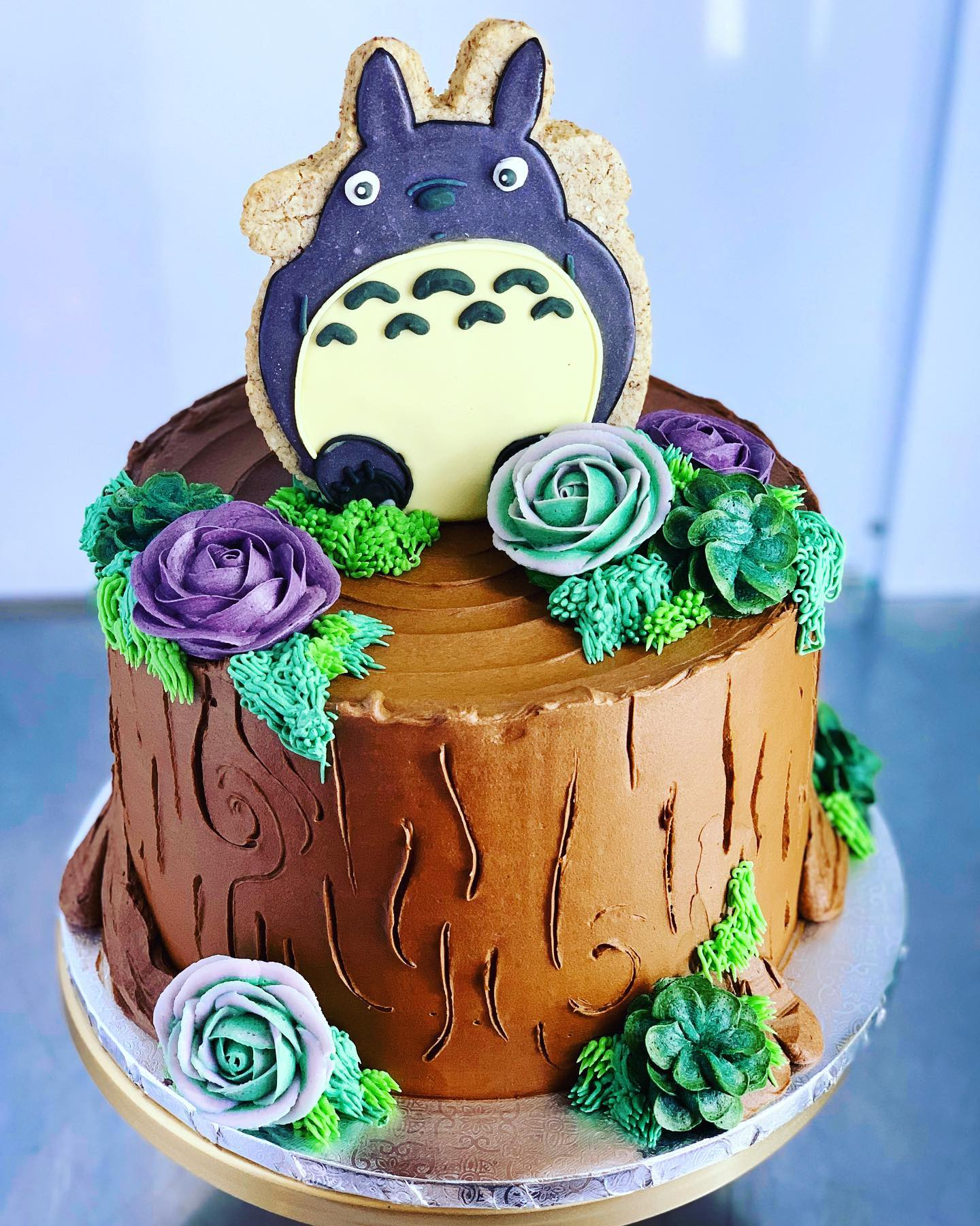 Phenomenal Totoro Succulent Cake Hayley Cakes And Cookieshayley Cakes And Funny Birthday Cards Online Aeocydamsfinfo